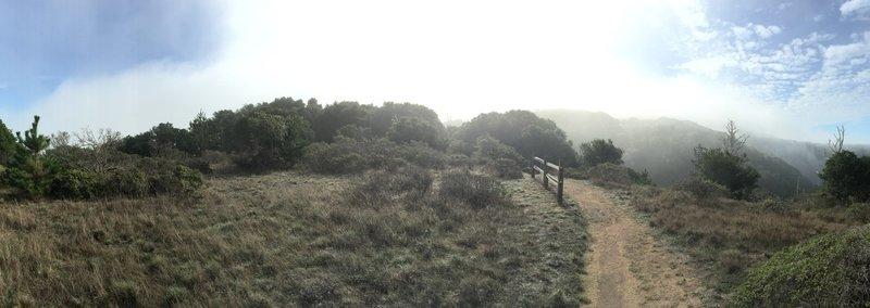 N. Ridge Trail, Angel Island.