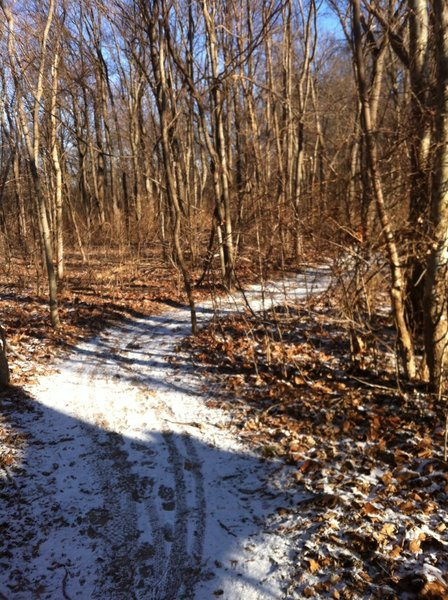The trail after a light snow
