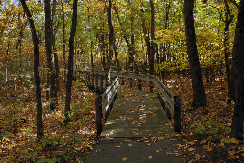 Fall colors on the Calumet Dunes Paved Trail.