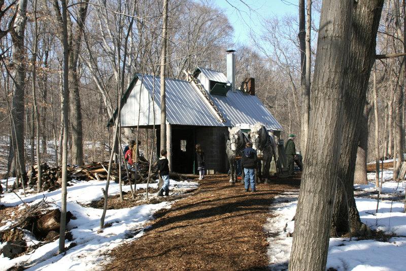 Maple Sugar Shack at Chellberg Farm