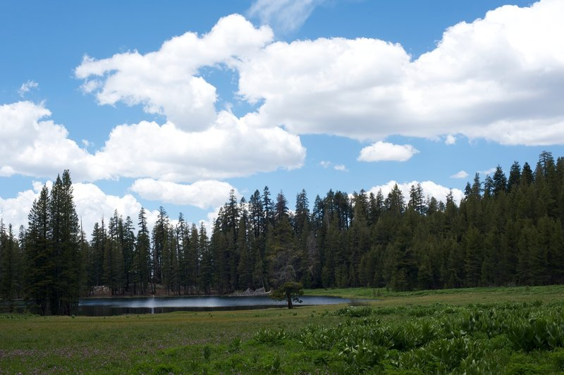 Meadow and Lukens Lake approaching the lake.