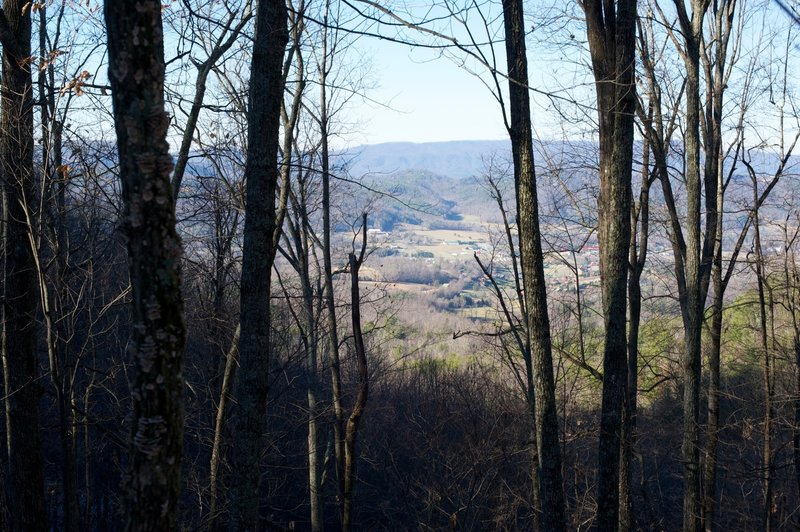 View into Wears Valley from Little Brier Gap