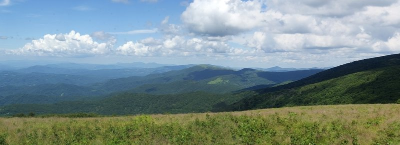 Roan Mountain (Round Bald) Panorama.