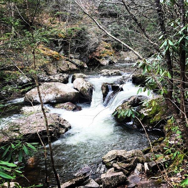 Whitetop Laurel Creek