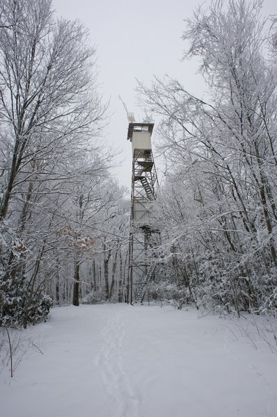Air quality monitoring station at the old Cove Mountain Fire Tower.