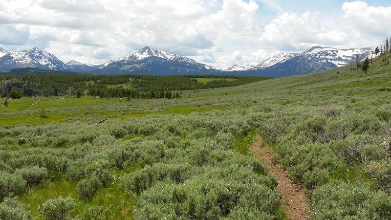 Backside of bunsen peak trail.