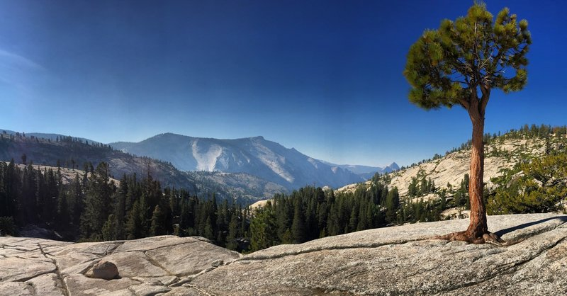 View of Half-Dome from Olmstead Point