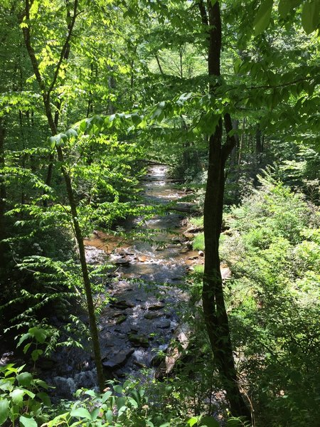 Lovely Smoky Mountains Stream