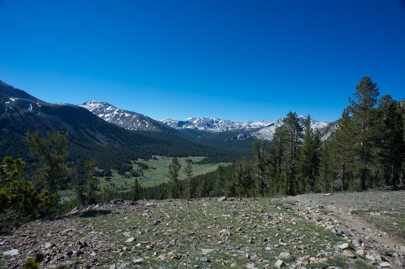 A view of Dana Meadows and surrounding peaks from the saddle of Gaylor Peak.