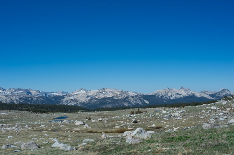 A view of the Cathedral Range from the alpine basin where the Gaylor Lakes, and Granite Lakes are found.