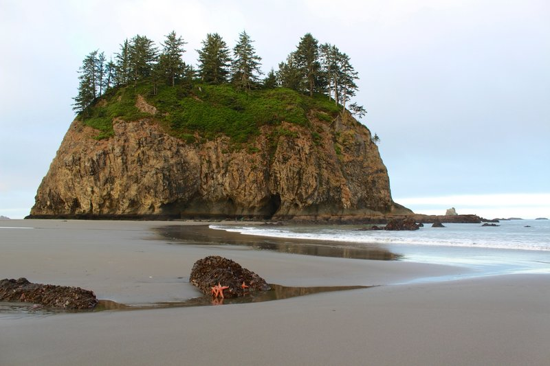 The island off of Second Beach is amazing to explore at low tide.