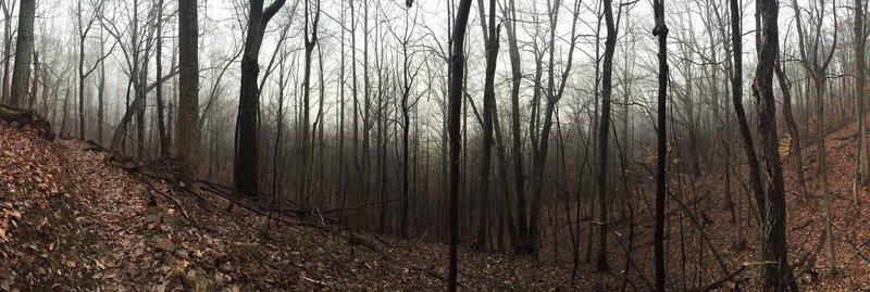 Pano of ravine along trail.