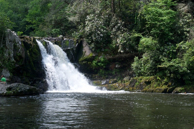 Abrams Falls in the summer.