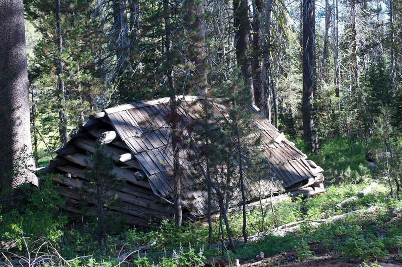 Approaching the meadow, you encounter Mr. McGurk's cabin.