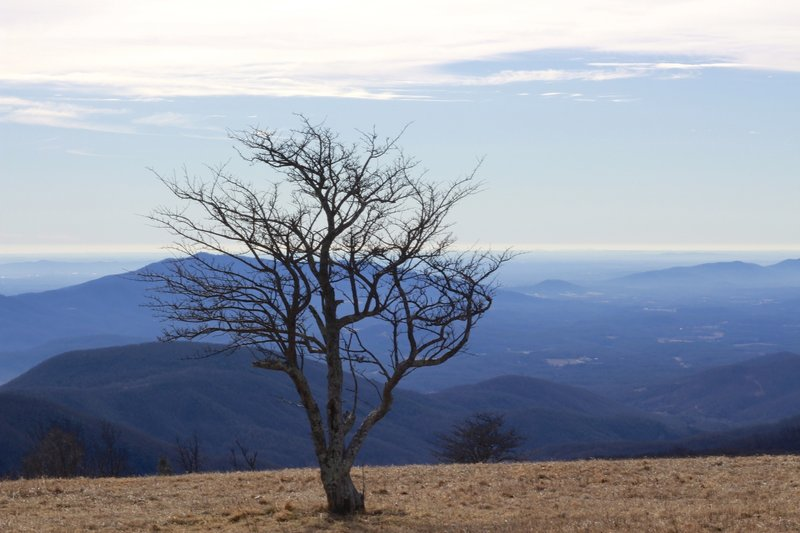 Cold Mountain in December.