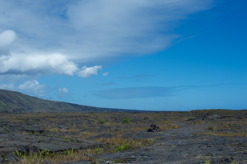 Hiking out to the petroglyphs across the old lava field.