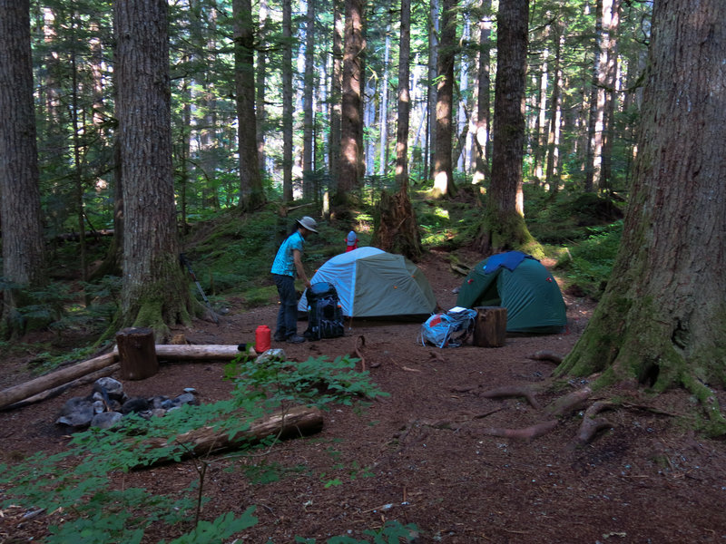 A nice, cloistered spot at Indian Creek Campground.