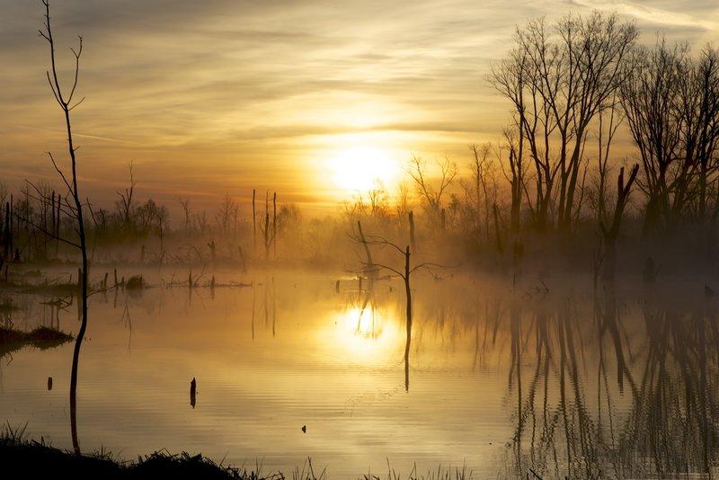 Sunrise on the Great Marsh.
