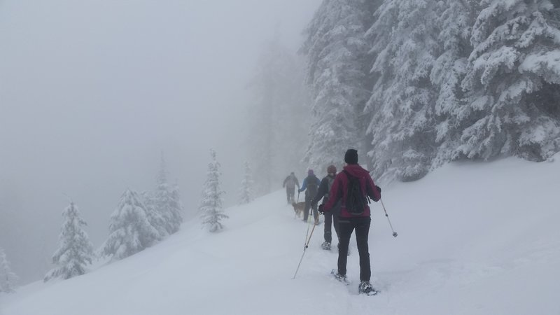 The fog comes in while we make our way up.