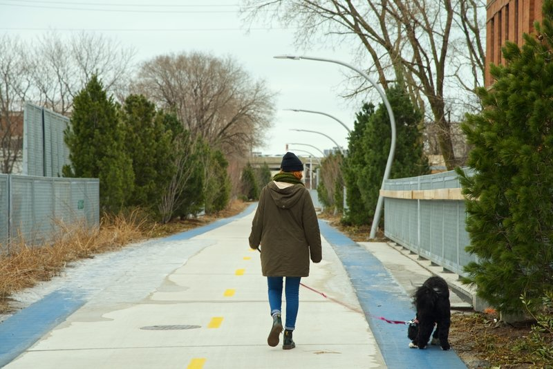 Walking your dog on the 606.