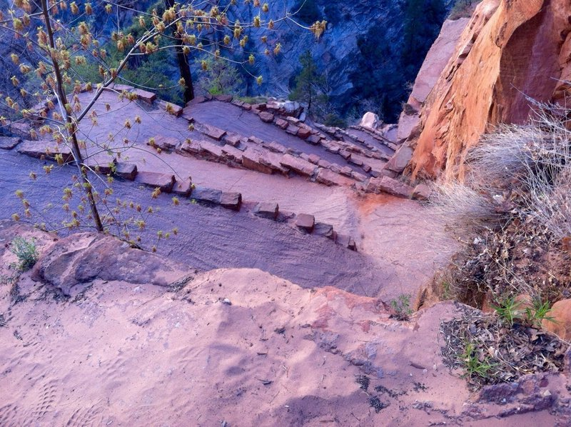 On the way up to Angels Landing.