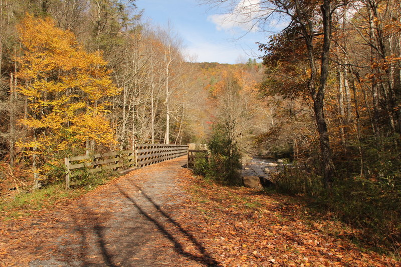 Fall is a great time to be on the Virginia Creeper Trail.