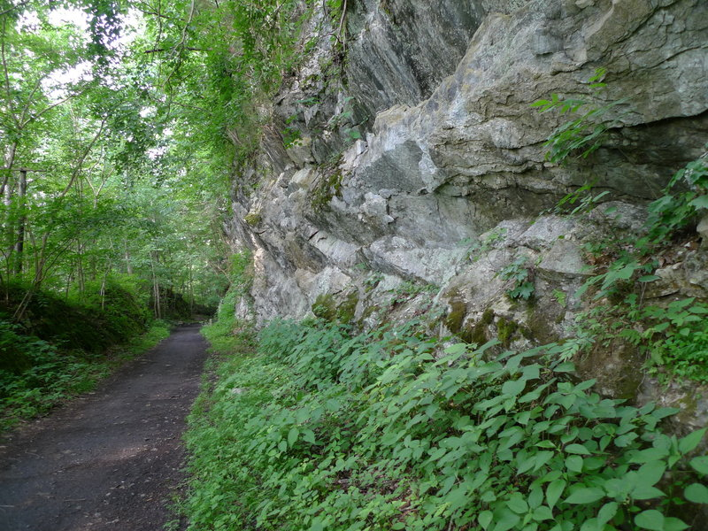 Karst formation along the Creeper Trail