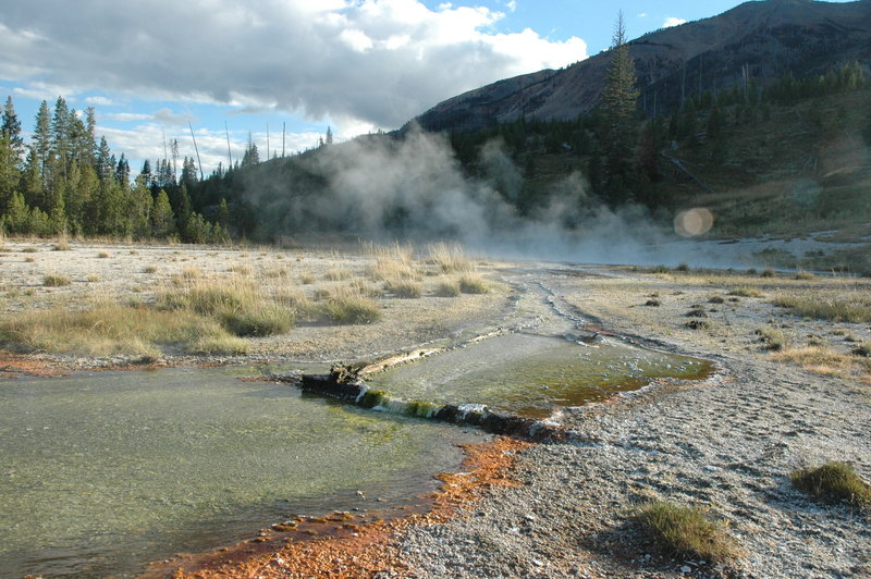 Runoff from Rural Geyser and nearby thermal features.