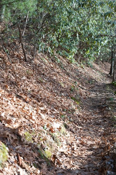 The trail making its way along the ridge line.