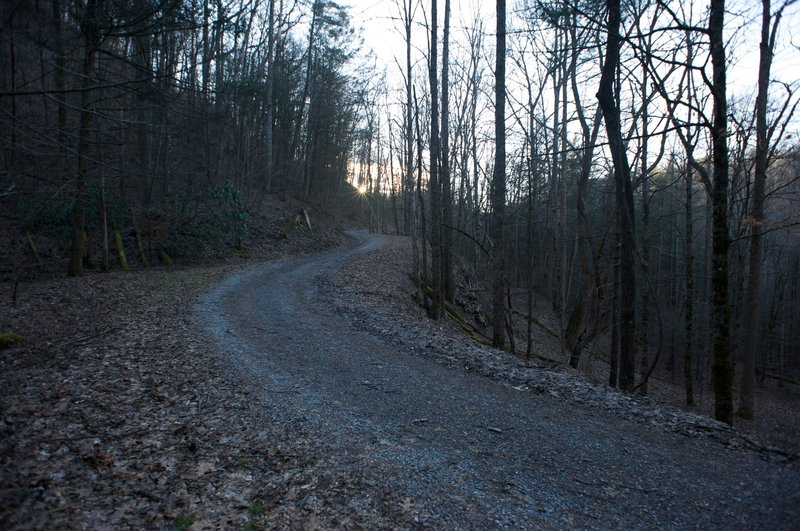 Rich Mountain Road as it comes down to the trailhead from Cades Cove.