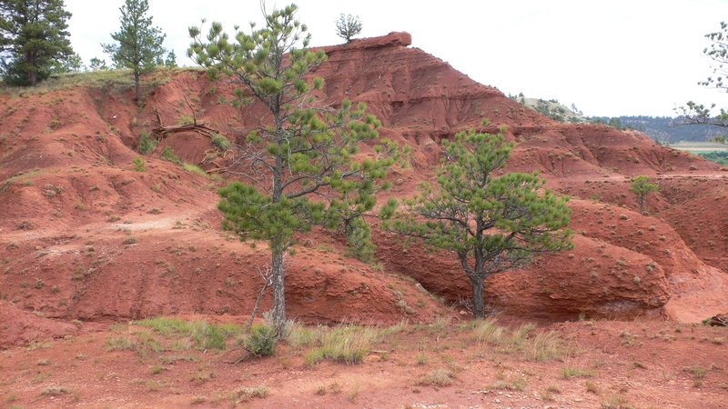 Awesome red badlands along Red Beds Trail.
