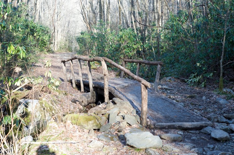 Bridge crossing a small creek that feeds into the Lynn Camp Prong.