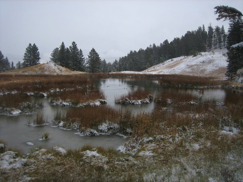 First beaver pond seen on a snowy October day.