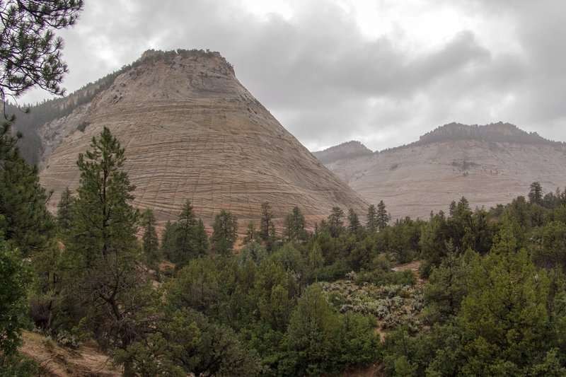 Checkerboard Mesa from viewpoint.