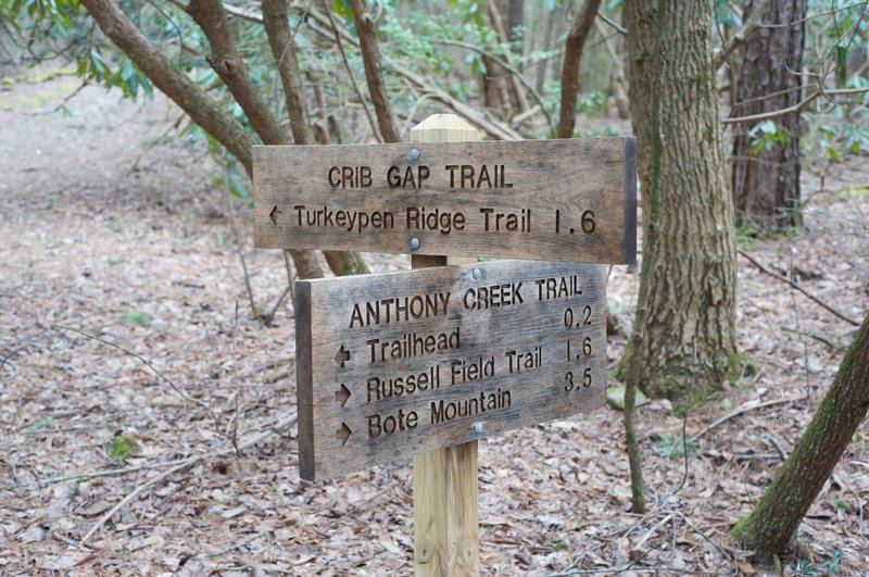 End of the trail. This is the trail junction at the Anthony Creek Trail.