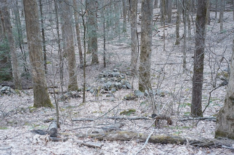 The stone piles off the trail are foundations from early settlers' homes. These stones are all that remain.