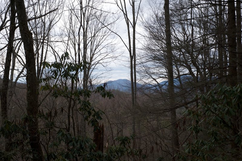 Views from Crib Gap are obstructed, but still show the beauty of the area.