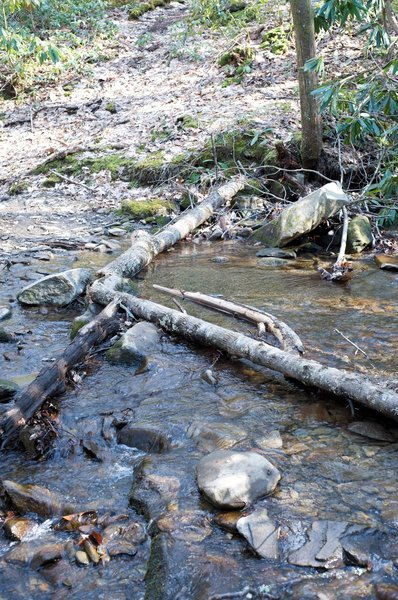 It's just a hop, skip, and jump across these small creeks like Laurel Cove Creek.