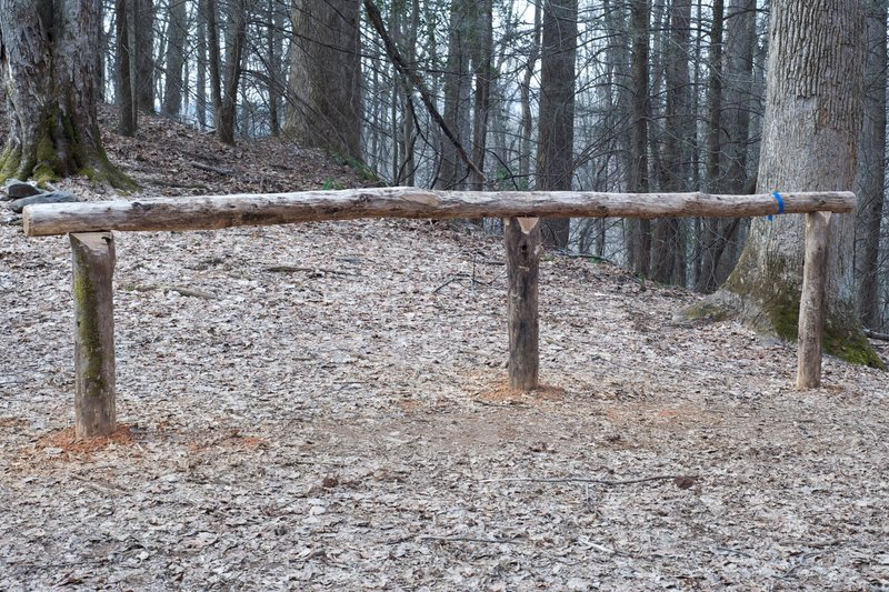 Finley Cane is also a horse trail, as evidenced by this area to tie up your horses for a rest.