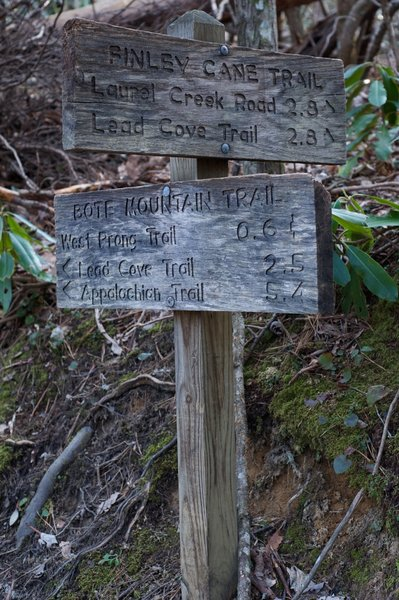 The trail ends at the junction with the Bote Mountain Trail.  Your options are listed on the signs. The Smokies do a great job with marking the various trails and mileage.
