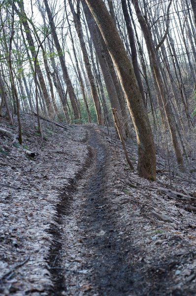 The trail is narrow and can be muddy in the fall and winter.
