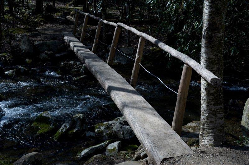 Log bridge over the West Prong.