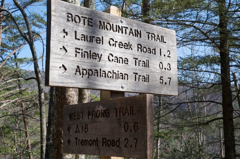 The West Prong Trail meets up with the Bote Mountain Trail and offers several possibilities for continuing.
