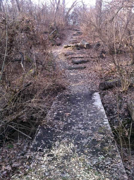 A bridge and some rock steps along the trail.