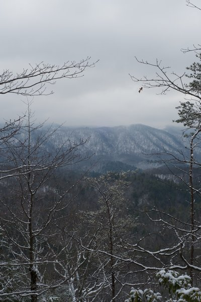 Views of the Smokies Crest from the Chestnut Top Trail.