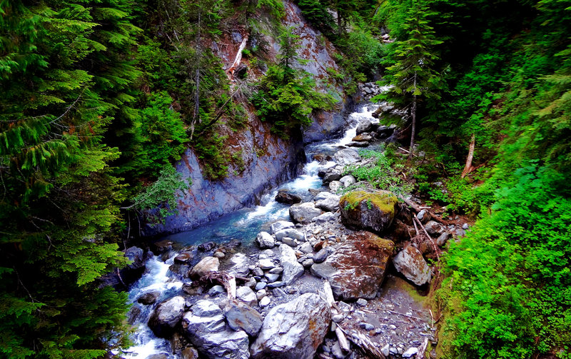One of the many impressive creek crossings along the North Fork of the Quinault Trail.