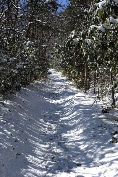 The trail climbs to the Appalachian Trail at the crest of the Smokies. This means that even though the trail may be clear when you start, you can be in snow by the time you finish in the winter.