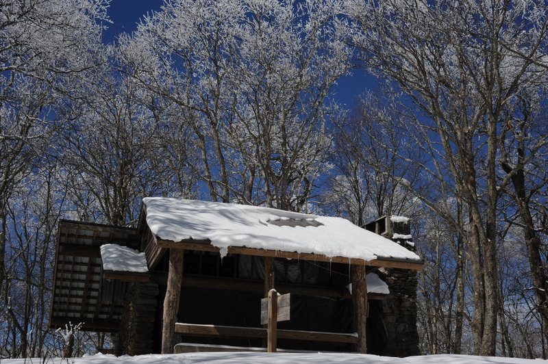 Snow covered shelter and trees set against a beautiful blue sky.
