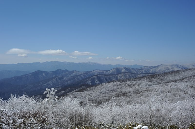 The North Carolina side of the Smokies from Spence Field.