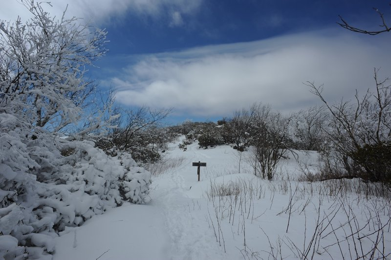 The Appalachian Trail as it runs along the ridge line.